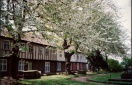 Cherry blossoms by the Gildencroft Tudor Cottages, St Augustine's churchyard